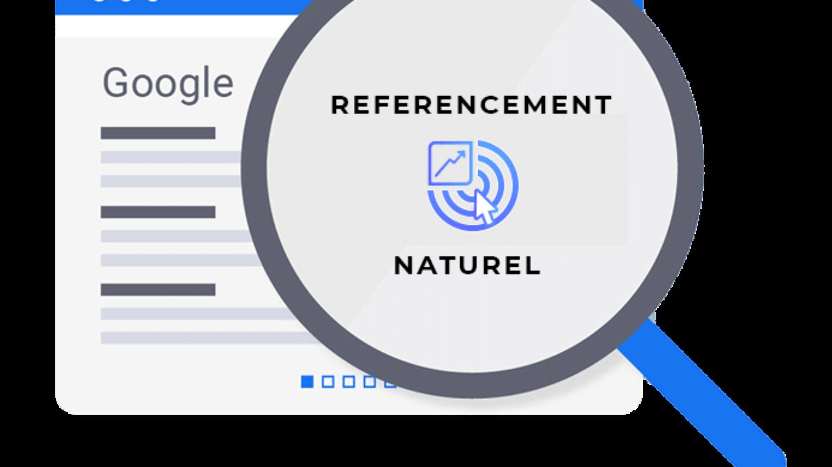 Référencement naturel site web